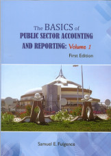 The Basics of Public Sector Accounting and Reporting: Vol 1 First Edition