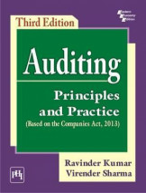 Auditing Principles and Practice